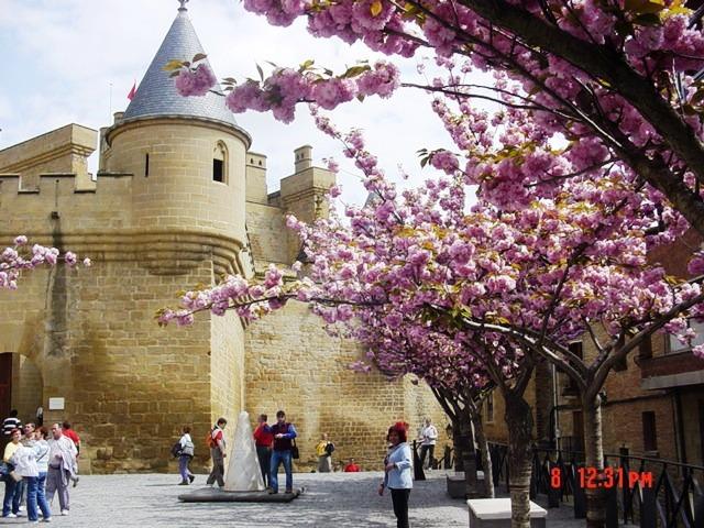 8-04-2006 Olite (el Castillo en primavera)