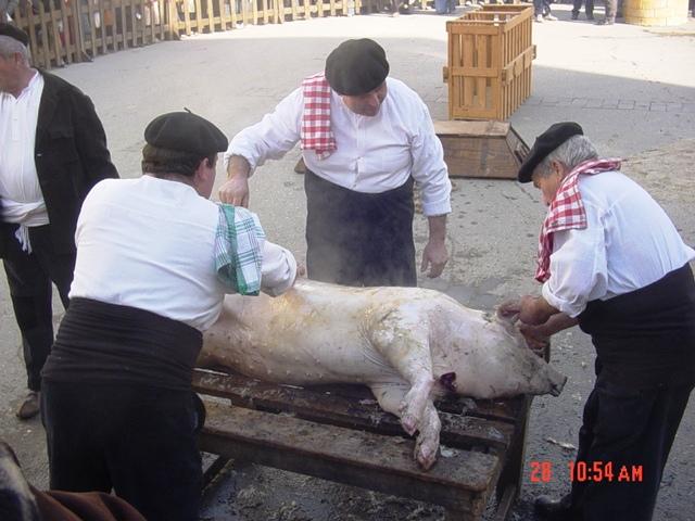 28-01-2007 Fiesta del tocino en Albelda