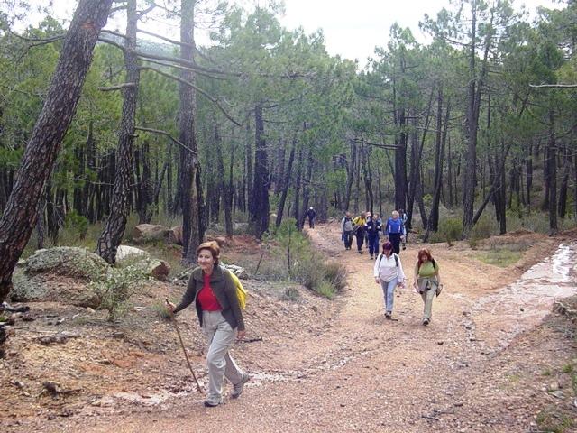 17-05-2008 los pinares del Rodeno